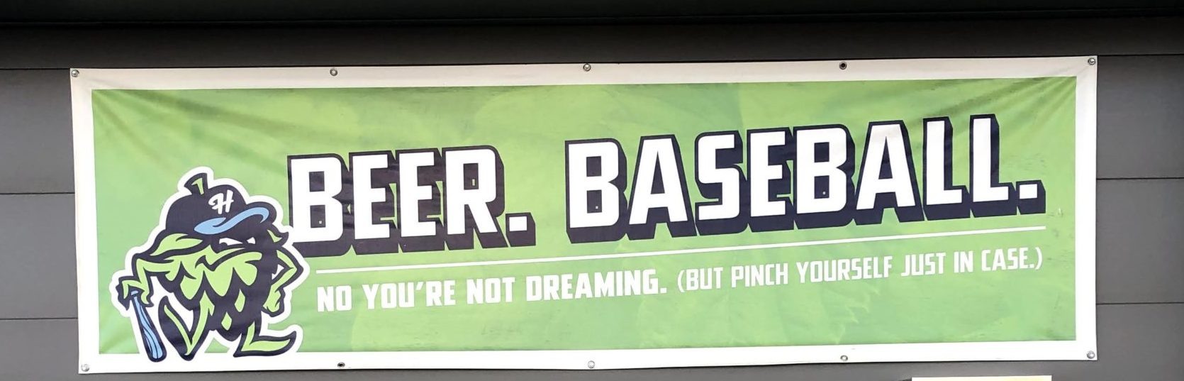 Ballpark of Brews